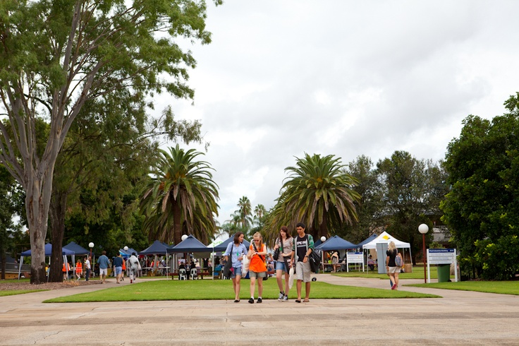 Gatton Market Day