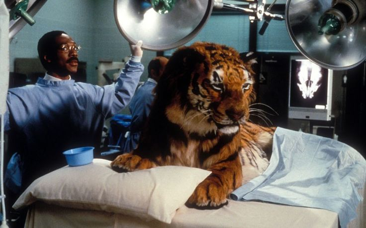 In Dr. Dolittle (1998), a suicidal tiger named Jacob (voice of Albert Brooks) is one of the many animals who consult Dr. Dolittle