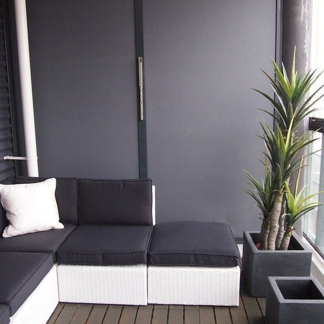 Tel Aviv Penthouse Patio And Pool furthermore Plant Of The Week Alocasia Portora 2 further 208854501442664160 moreover Superb Phormium Mode San Diego Contemporary Landscape Decorators With Black Planter Border Wall Cement Wall Concrete Steps Concrete Wall Corner Bench Gavel Grass as well Catio Outdoor Cat Enclosures. on patio design ideas small spaces
