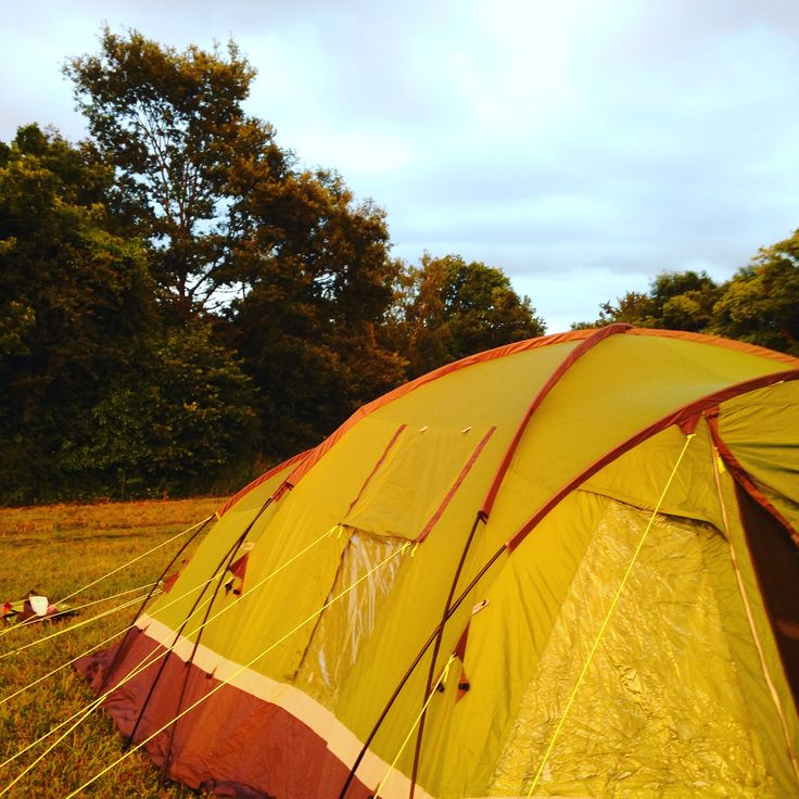 Abbotstone Wood Camping Unplugged