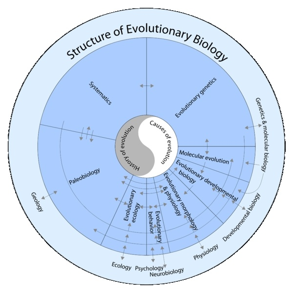 Structure of Evolutionary Biology