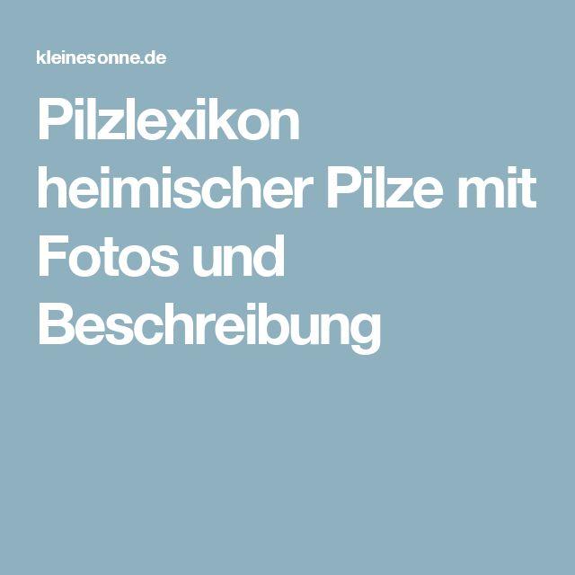 Pilzlexikon heimischer Pilze mit Fotos und Beschreibung