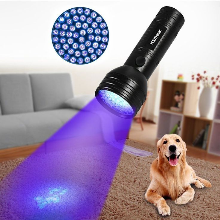 Pet Urine Detector Light Handheld UV Portable Urine Automotive Leak Detection #YOUTHINK