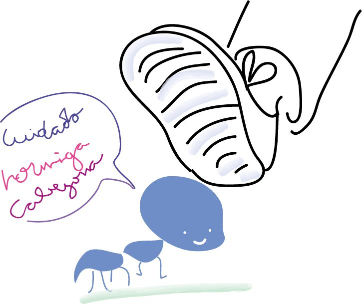 hormiga cabezona cruzando