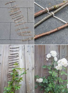 DIY climbing aid for growing plants in the garden