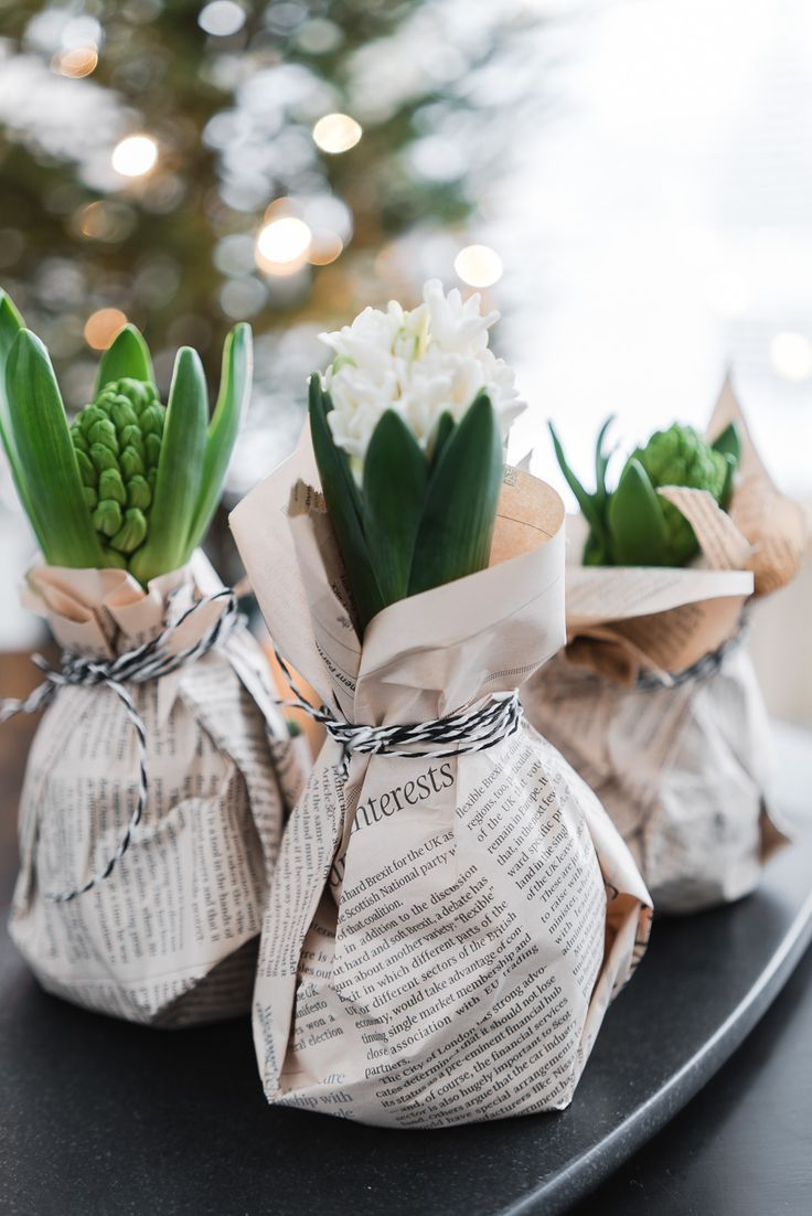 Lisbet E Hyacinths Sweet Gift Ideas Spring Decor Floral Arrangements