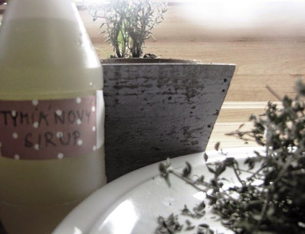 Domácí poklady: Tymiánový sirup