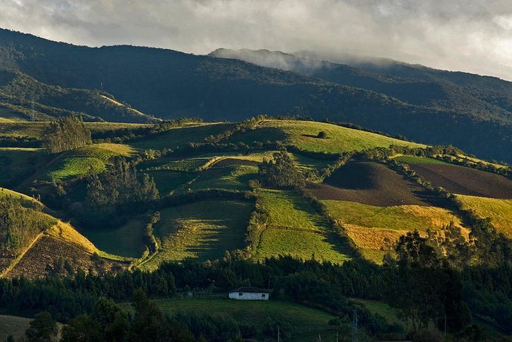 el paisaje en colombia es cubierto de hierba.