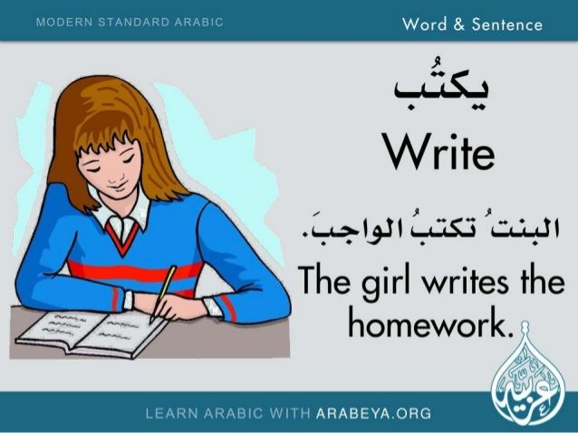 Word and Sentence (Modern Standard Arabic)