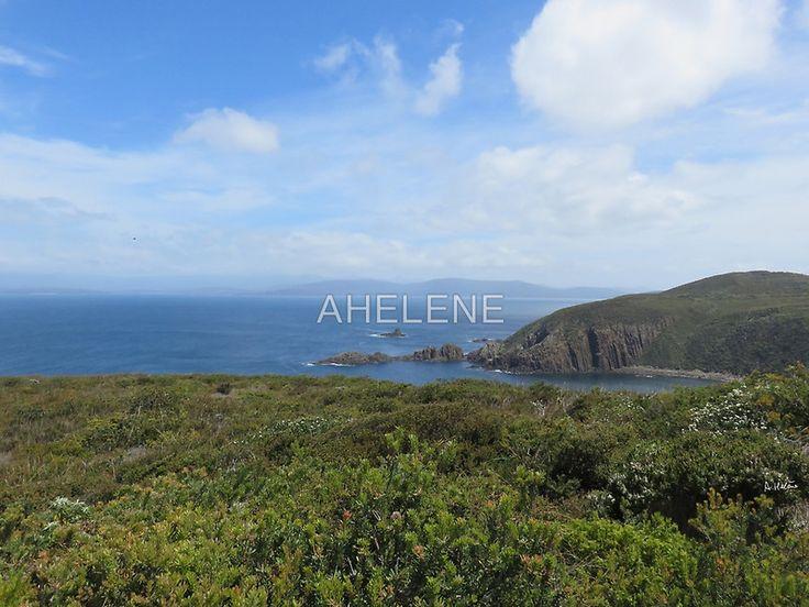 Cape Bruny rocks