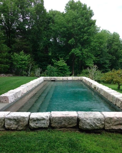 Natural looking lap pool set in the grass jardin for Natural rock swimming pools