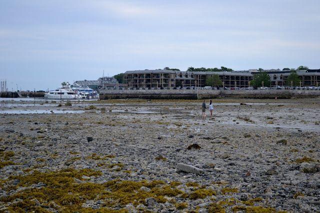 Bar Island, ME (Остров Бар, штат Мэн)