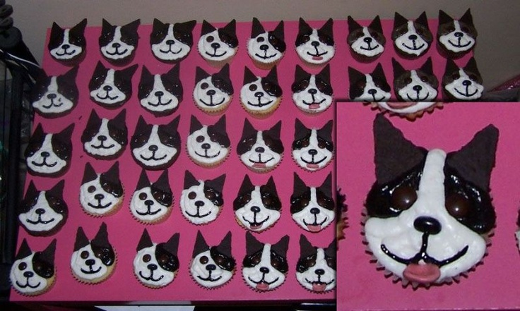 Boston Terrier cupcakes!