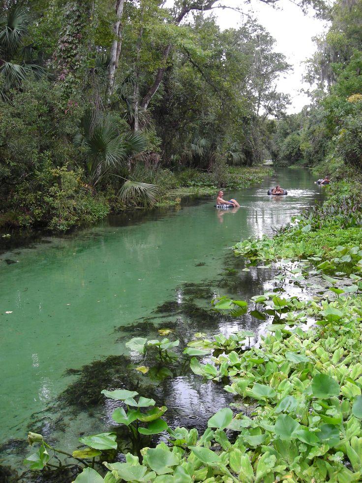 Rock Springs Run at Kelly Park Apopka, Florida   Florida ...