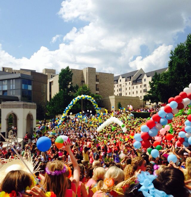 ••bidd day University of Arkansas••