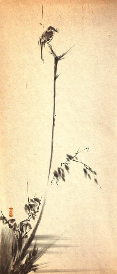 musasi miyamoto 宮本武蔵 枯木鳴鵙図  (Pintor)
