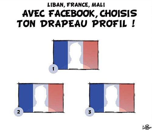 Vitamine (2015-11-21) Liban, France, Mali: Avec facebook, choisis ton drapeau profil | Presse-dz