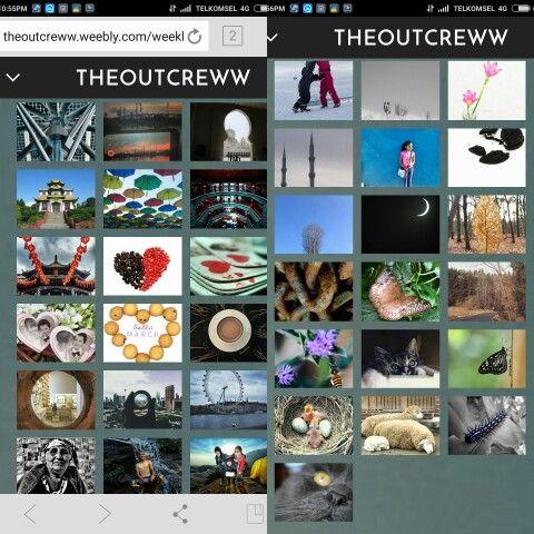 Theoutcreww grids