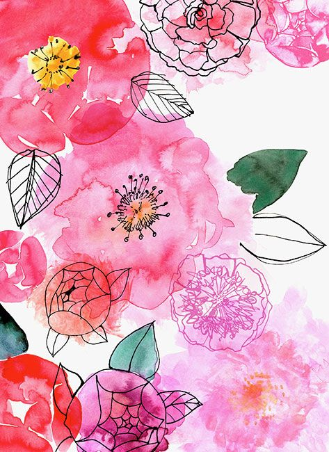 Margaret Berg : florals / spring. http://margaretbergart.com/illustration/lic_portfolio.php?section=3&artid=595