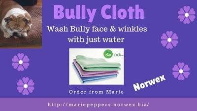 Bulldog Face wash with this cloth and no soap, just a little bit of water.  Bulldog wrinkle cleaning with Norwex Body Cloth.  Order here and help pet rescue year round on Marie's site,   http://mariepeppers.norwex.biz/en_US/customer/shop/product-detail/121627?categoryName=Bath_and_Body_Care
