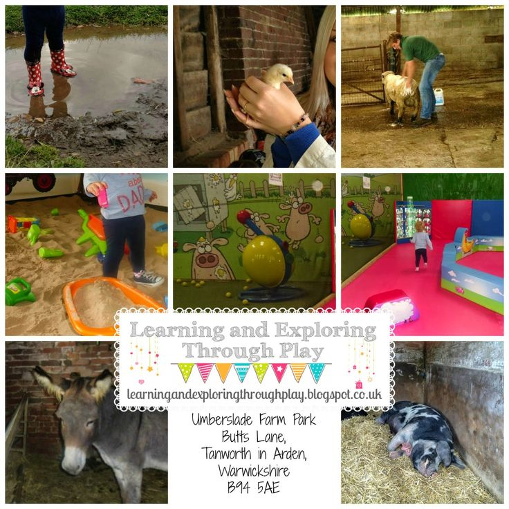 Learning and Exploring Through Play: Umberslade Park Farm - Warwickshire