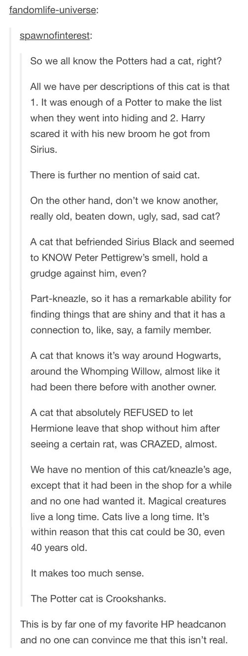 The cat was also supposed to have a flat face and so did Crookshanks omg