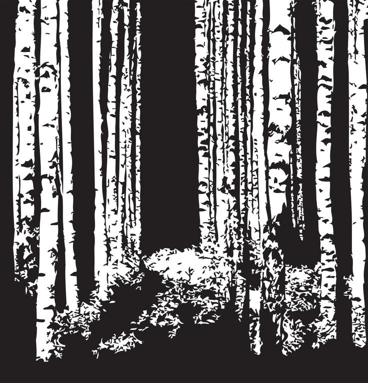 Svensk vinternatt. Siluetter av björkar.