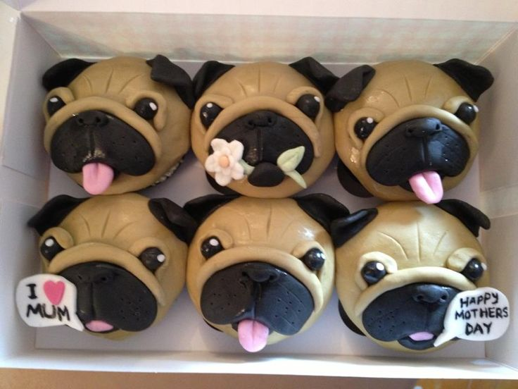 Image result for Pug.cupcakes
