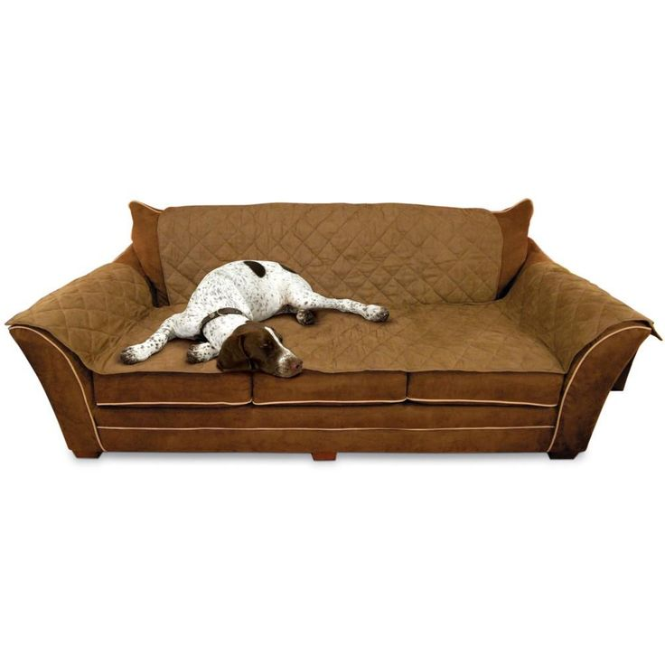 Best 20 Pet couch cover ideas on Pinterest Pet sofa cover