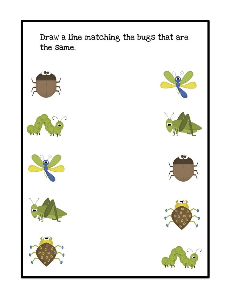 83 Best Pre K Bug Theme Crafts Worksheets Images On