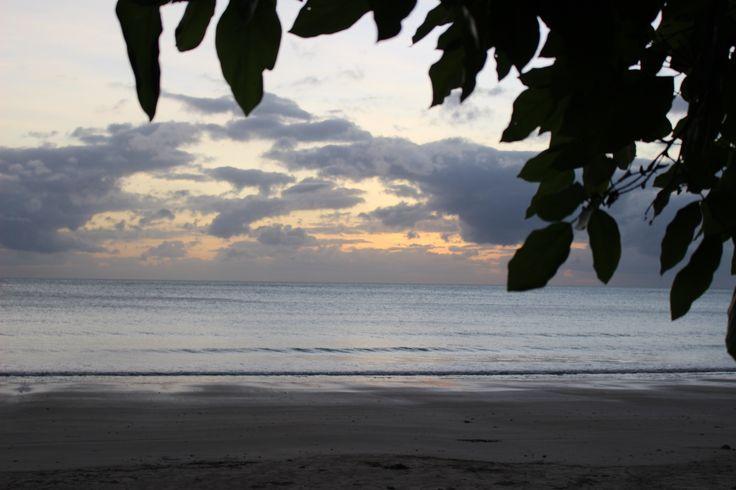 Cape Tribulation 😇 Queensland, Australia