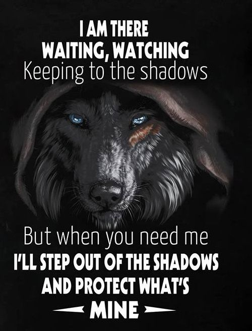 You have no idea how true this is.. I know i posted this before and it seems quite popular but i dig this one because of the wolf. Spirit animal.