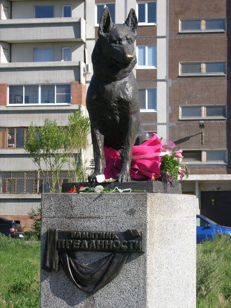 Памятик преданности. Тольятти. / Monument dedication. Tolyatti. Russia. Памятник безграничной собачьей преданности появился в Тольятти в июле 2002 года. Автомобиль с собакой и ее хозяевами попал в аварию. Хозяева не выжили. Долгих 7 лет, практически не вставая, собака провела на месте аварии, надеясь на чудо. Многие пытались взять собаку к себе, но пес упорно отказывался. Люди кормили собаку до самой её смерти. В память о собачьей верности тольяттинцы установили этот памятник.