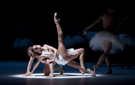 Naked Swan Lake Ballet | Swimming in Swan Lake: Fifth International Dance Gala in Graz | uncoy ...