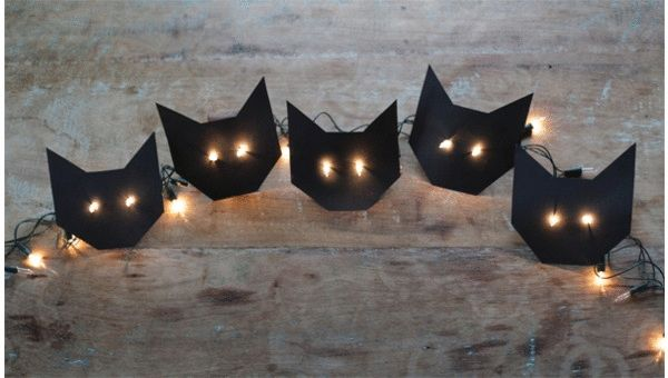 DIY pisca-pisca de gatinho    Imaginarium
