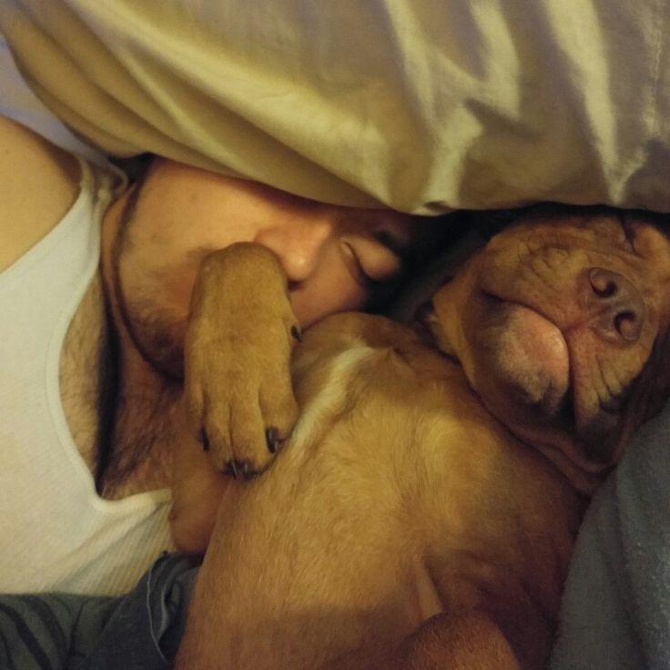 Rocco has to sleep like this