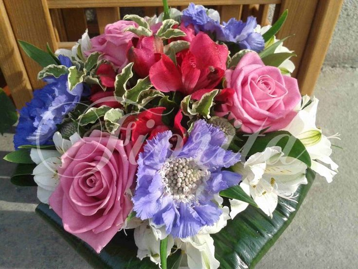 Hand-tied bouquet of roses, anemones and alstroemerias