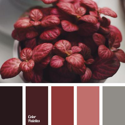 25 best red color pallets trending ideas on pinterest - Maroon and grey color scheme ...