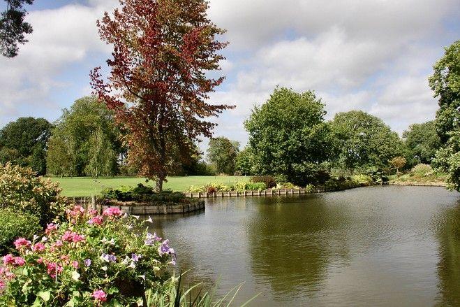 nice country pond