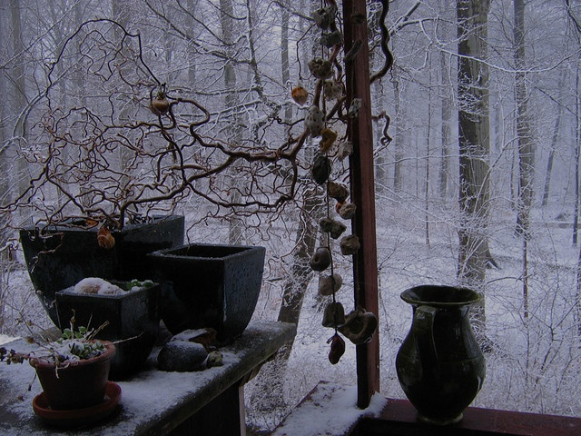 Snowshower/ Marina Winkel