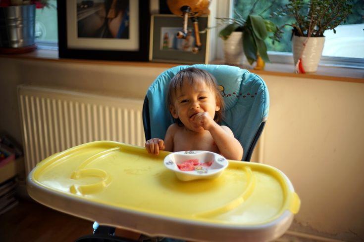 Dana Rogoz | Alimentatia copilului dupa varsta de 6 luni