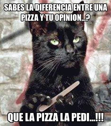 "Trans; ""Do you know the difference between a pizza and your opinion?....I asked for the pizza!"""