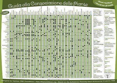 Tabella delle consociazioni per l orto - Calendario semina fiori ...