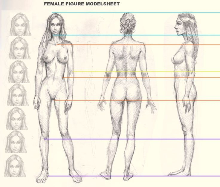 how-to-draw-woman-figure  Drawing  Pinterest  Athletic Women ...
