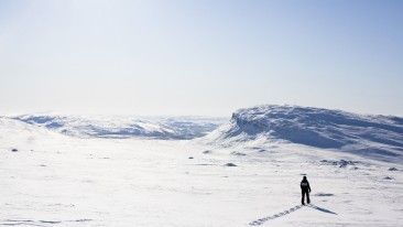 Snowshoeing is a great way to experience Finland's wintry wildernesses.