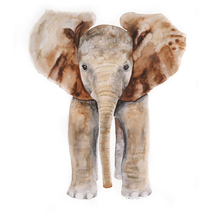 The baby elephant portrait is a giclee print of Brett Blumenthal's original watercolor painting. With a white and gray color palette, the safari nursery art is perfect as jungle nursery décor or as a