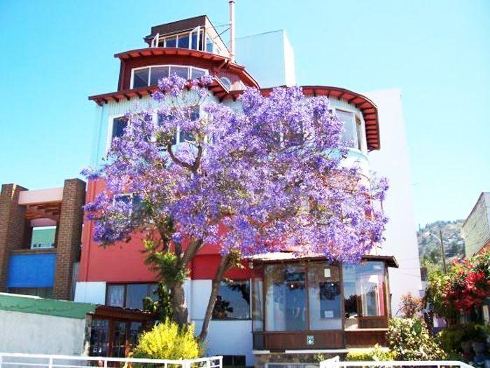been here~ Pablo Neruda's house in Valparaiso