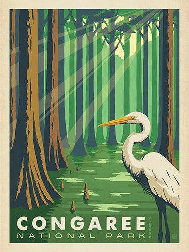 Anderson Design Group has created an award-winning series of classic travel posters that celebrates the history and charm of America's greatest cities and national parks. Founder Joel Anderson directs a team of talented Nashville-based artists to keep the collection growing. This print celebrates the serene beauty of Congaree National Park.