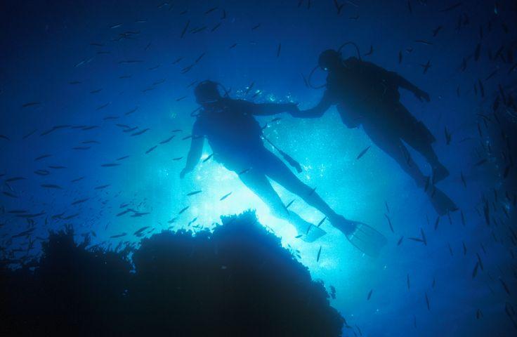 Sipidan - best diving in the world