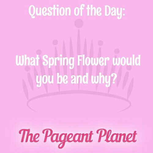Click to discover a Pageant Question About Favorite Authors and learn how to answer this pageant interview question in pageant interview.